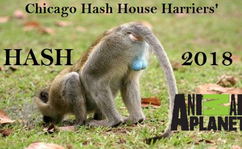 Chicago Hash House Harriers Hash Ball 2018